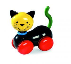 Patrick-Rylands-cat
