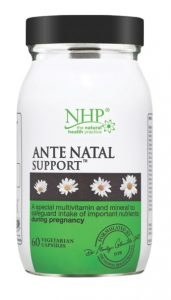 Ante Natal Support