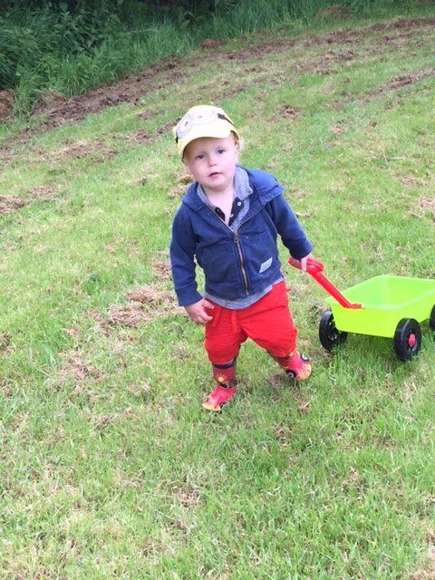 Alfie, outdoors